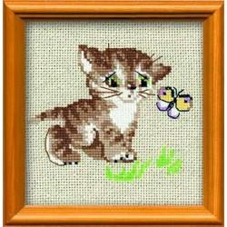 Котёнок с бабочкой