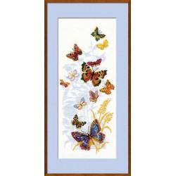 Бабочки России.