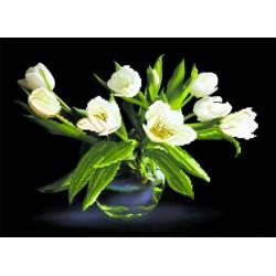 4077 Белые тюльпаны. Рисунок на шёлке.