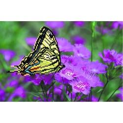 4000 Бабочка на лиловых цветах